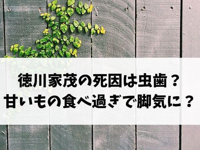 徳川家茂の死因は虫歯?甘いもの食べ過ぎで脚気に?
