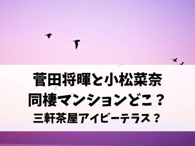 菅田将暉と小松菜奈の同棲マンションどこ?自宅はブリリアイスト三軒茶屋アイビーテラス?