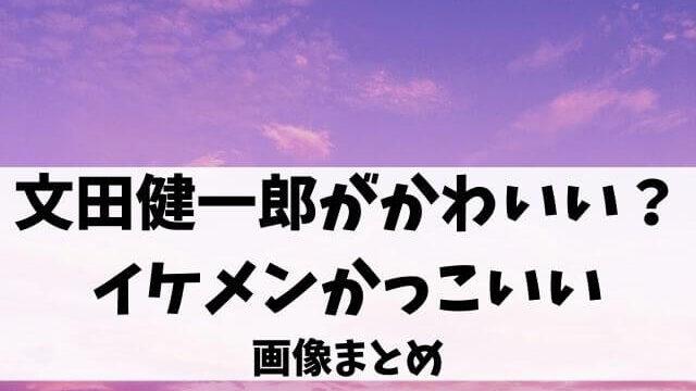 文田健一郎がかわいい?イケメンかっこいい画像まとめ