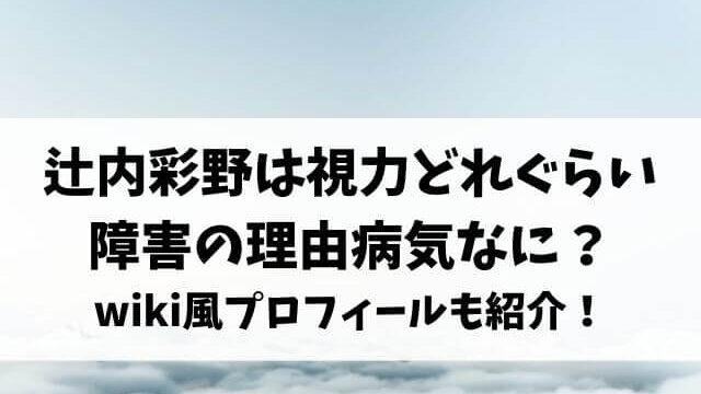 辻内彩野は視力どれぐらいで障害の理由の病気なに?wiki風プロフィールも紹介!